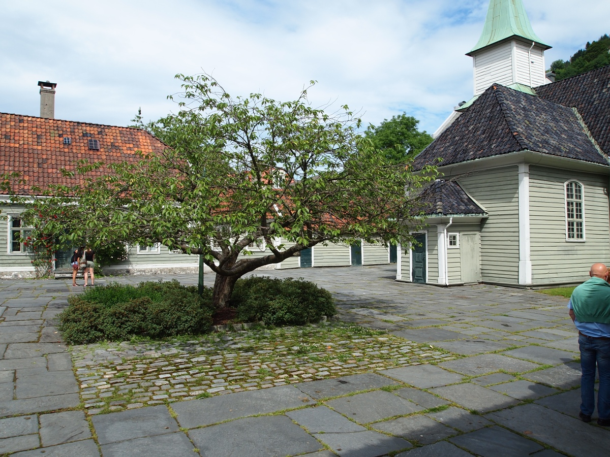 Lepramuseet – Turist i egen by2.1
